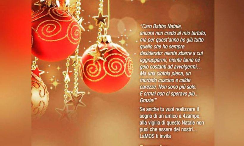 Evento di Natale firmato LAMOS.. per un Natale senza gabbie!