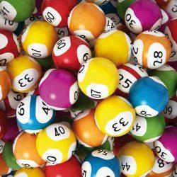 Numeri vincenti Lotteria a 4 Zampe 2019